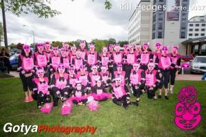 Pink Walk Image